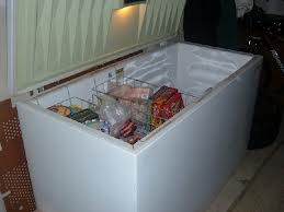 Freezer Repair Manotick